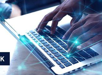 """Cyber risk: the """"new normal"""" scenario"""